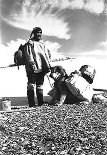 The Arctic People Transportation Migration