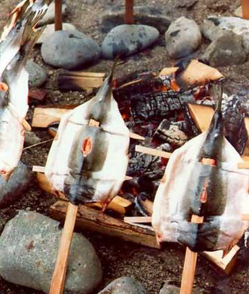 The Northwest Coastal People - Food / Hunting / Tools