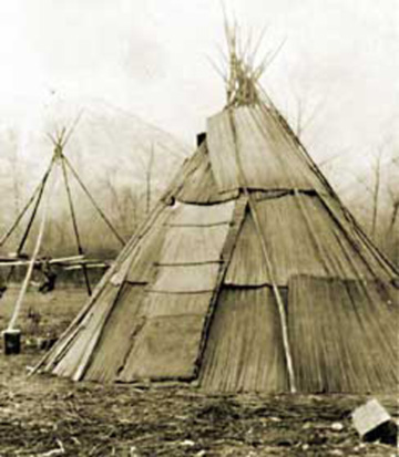 The Plateau People Environment Housing