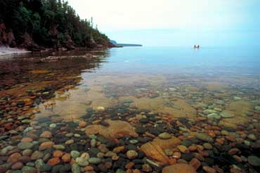 a nature guide to ontario pdf